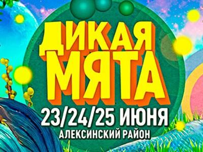 фестиваль «Дикая Мята» 2017