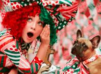 Новый клип Sia - Candy Cane Lane Мэдди и собака