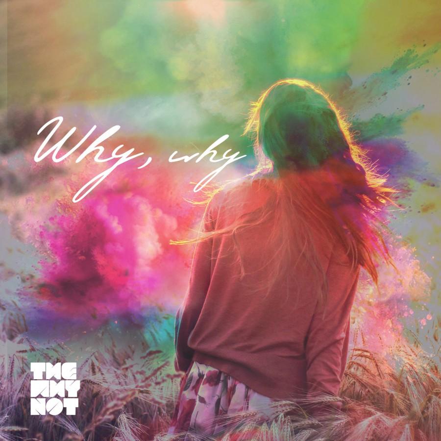 Новый сингл группы The Why Not – Why, Why