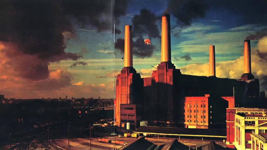 Башню Трампа закроют свиньями в честь альбома Pink Floyd - Animals