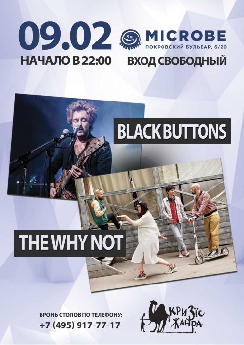 Концерт групп THE WHY NOT и Black Buttons 9 февраля
