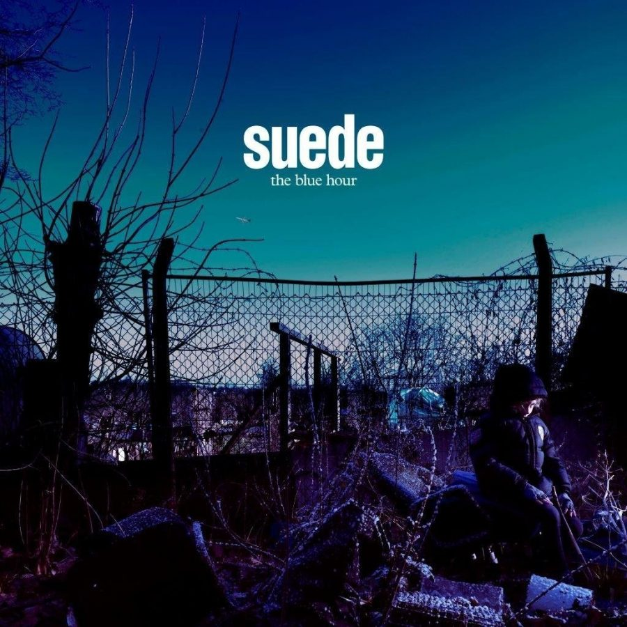 SUEDE - THE INVISIBLES