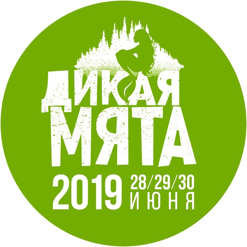 дикая мята 2019