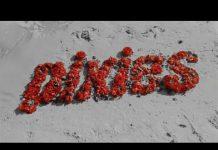 Серфинг убивает в клипе PIXIES - Long Rider