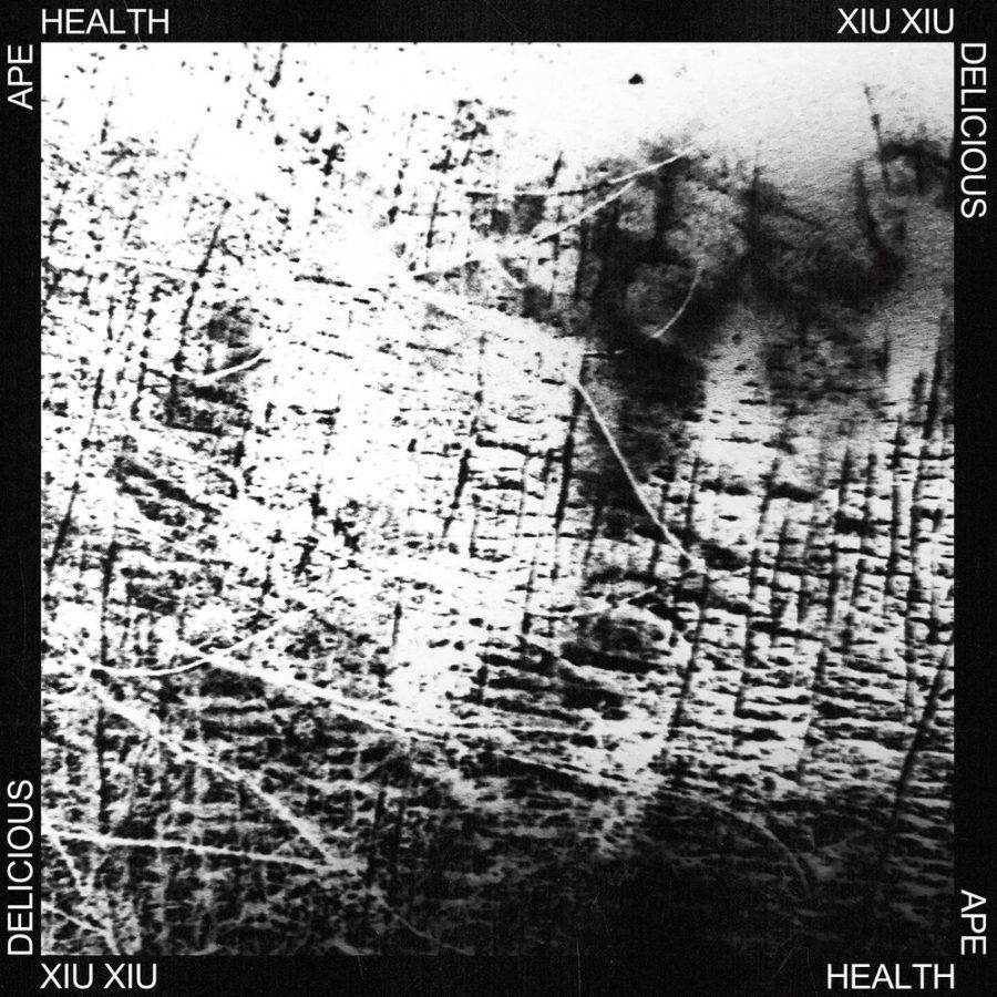 Совместный сингл Health и XIU XIU - DELICIOUS APE